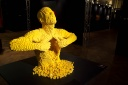 2014-02 The Art of the Brick